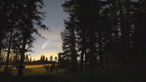 Fotos: o cometa Neowise anima os céus mundo afora