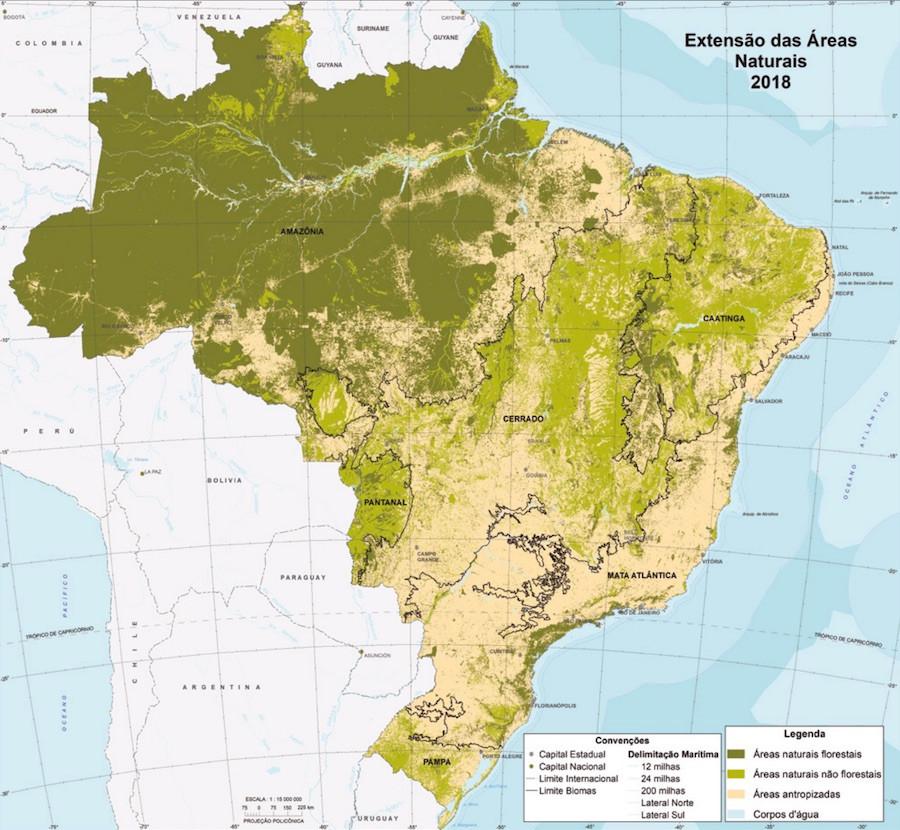 Mapa da vegetação nativa do Brasil