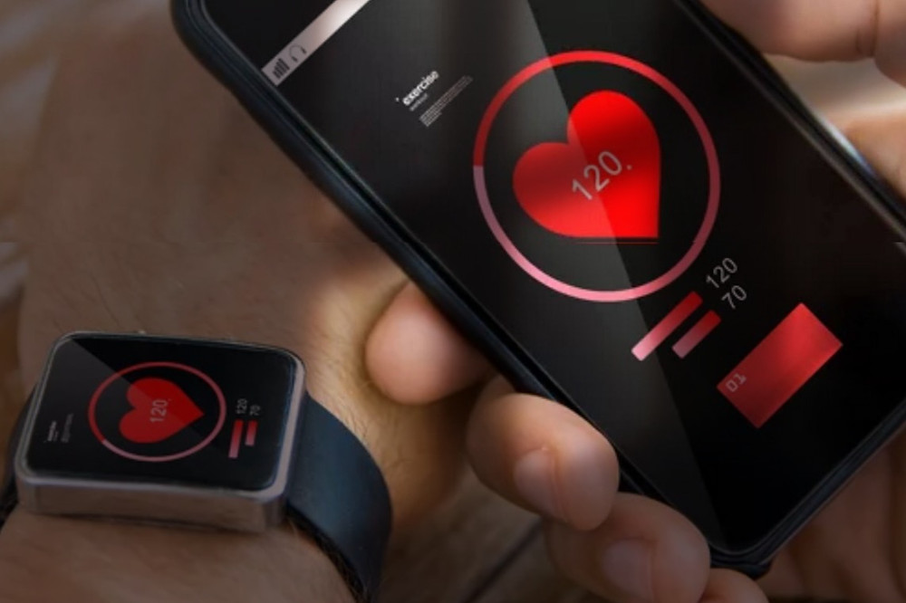 Imagem de app de validação de organismo