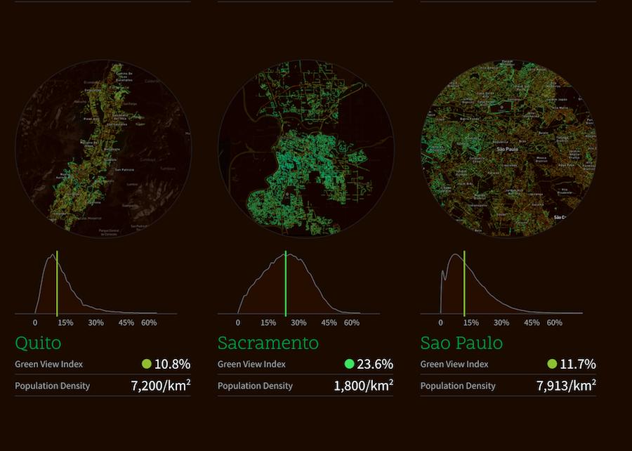 Tela da Treepedia mosrtrando São Paulo