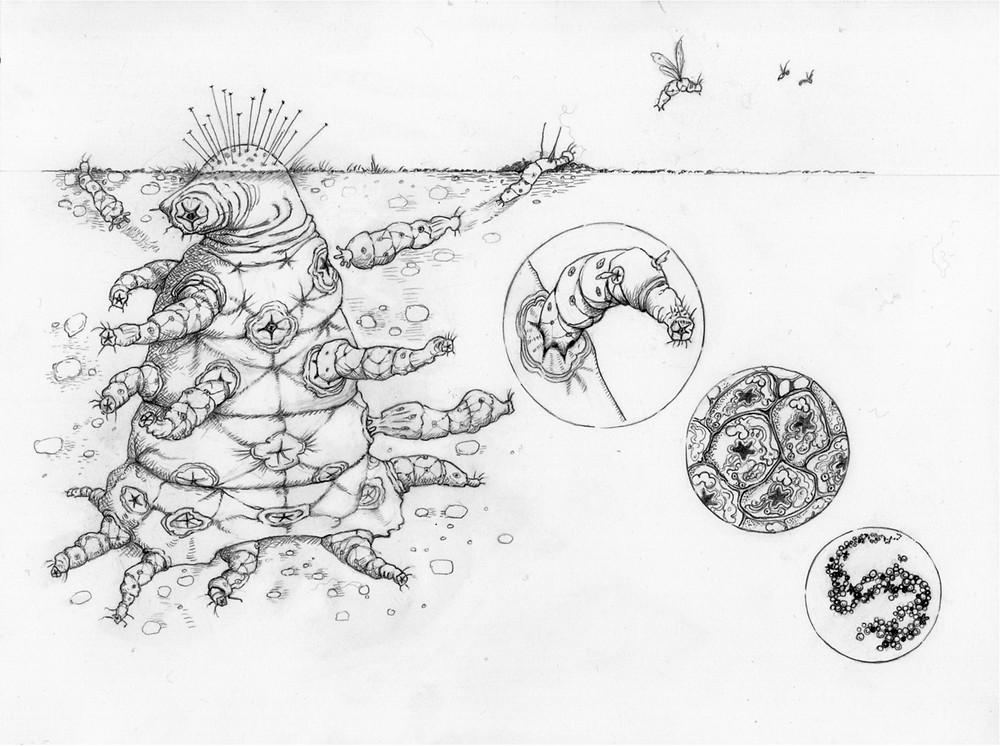 Alienígena complexo