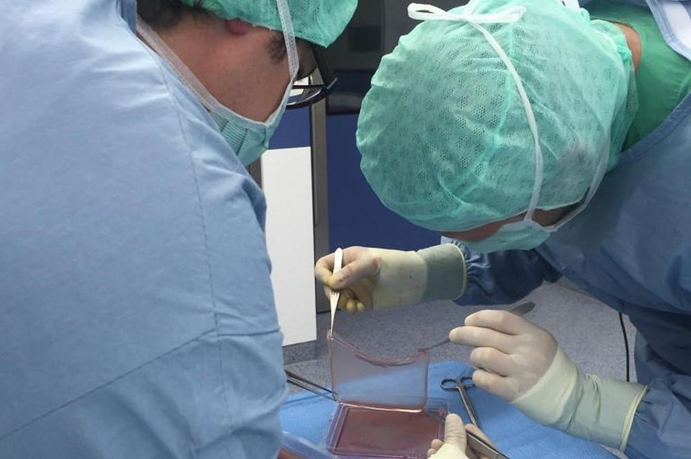 Médicos lidam com pele feita de células tronco