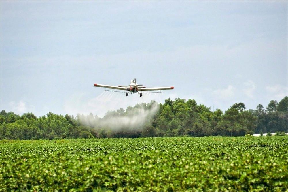 Avião em plantação