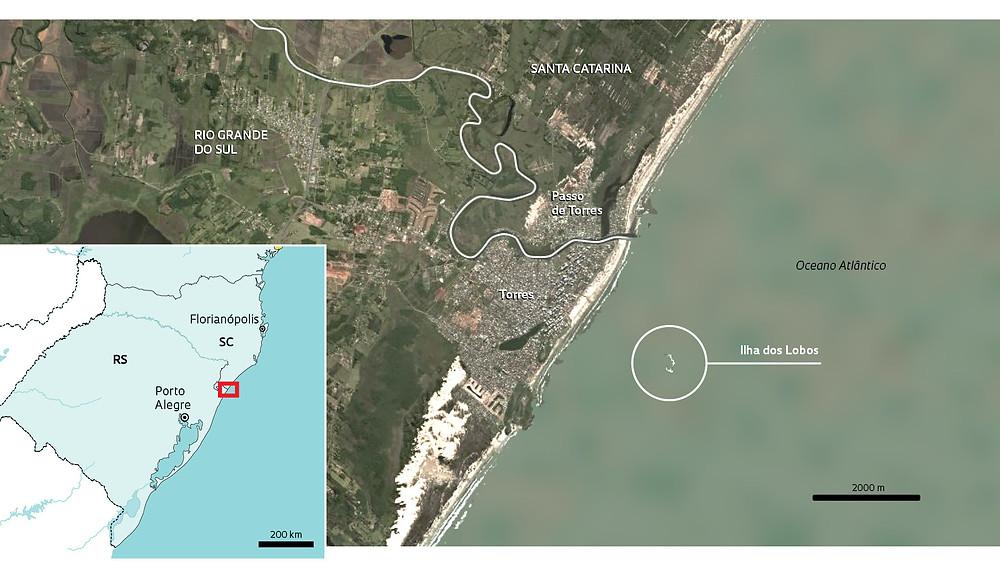 Infográfico da trajetória dos leões-marinhos