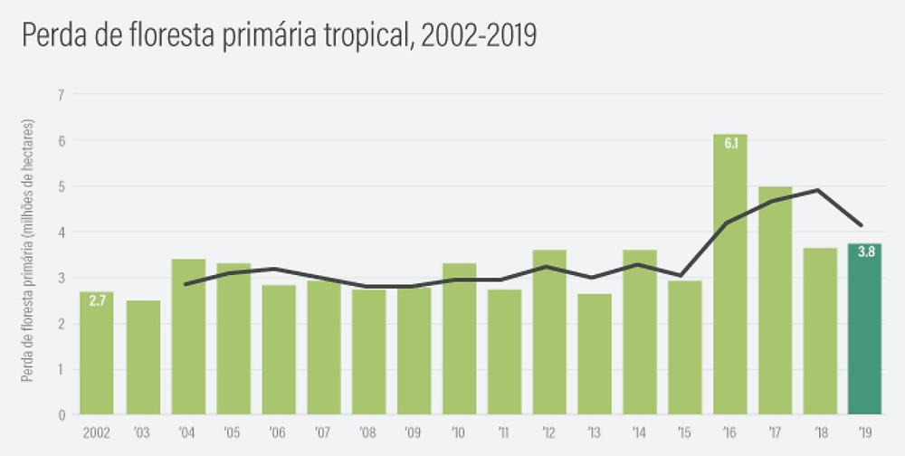 Gráficos das perdas de florestas tropicais de 2002 a 2019