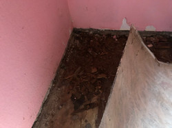 Holzboden unter PVC verfault