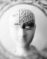 photo-of-head-bust-print-artwork-724994.