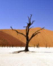 sky-sand-blue-desert-68661.jpg