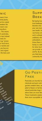 4 Ways 2 Save Bees