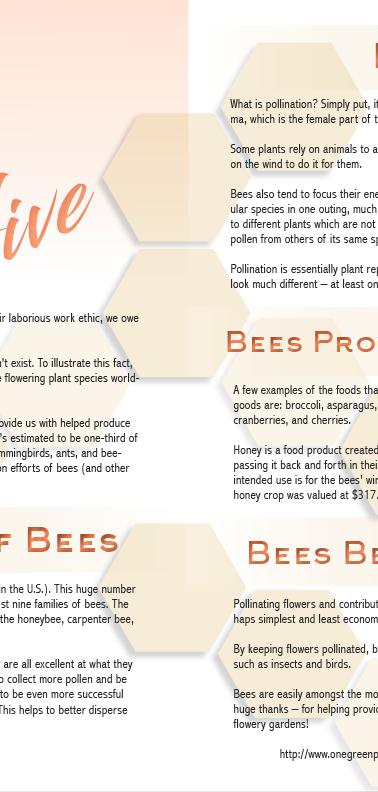 Heal The Hive