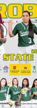 2019 Softball Poster