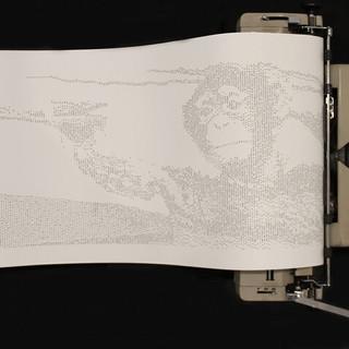 David Edward- Infinite Monkey Theorem.jp