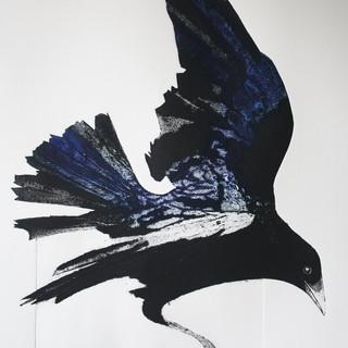 Sue Brown-It's a Crow.jpg