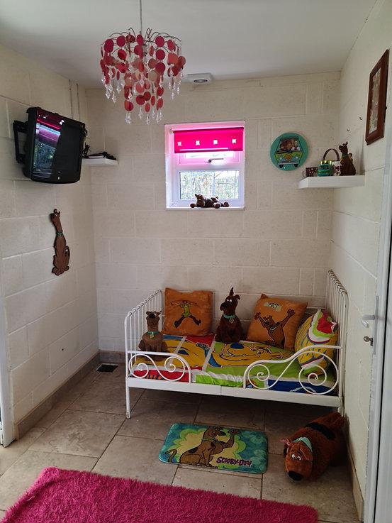 Scooby Room.jpg