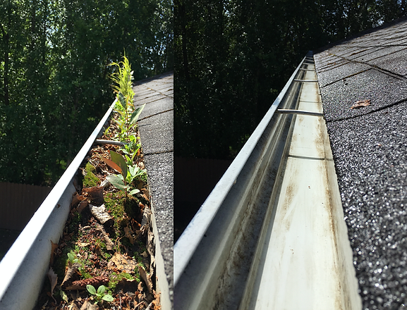 Gutter Cleaning service for Alexandria | Gutter Debris Removal & Gutter Brightening