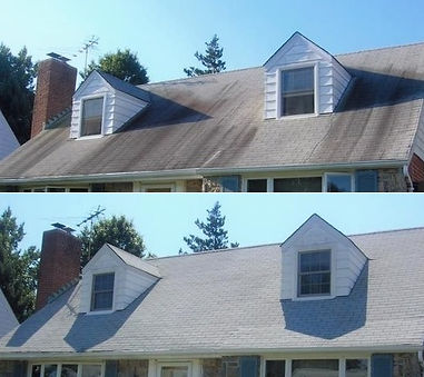 Roof cleaning service for Alexandria & Northern Virginia