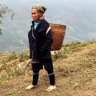 Hmong matchmaking