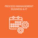 Virtual Process Management Business & IT