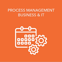 Virtual Process Management Business & IT