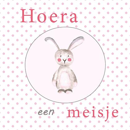 Wenskaart Hoera een meisje