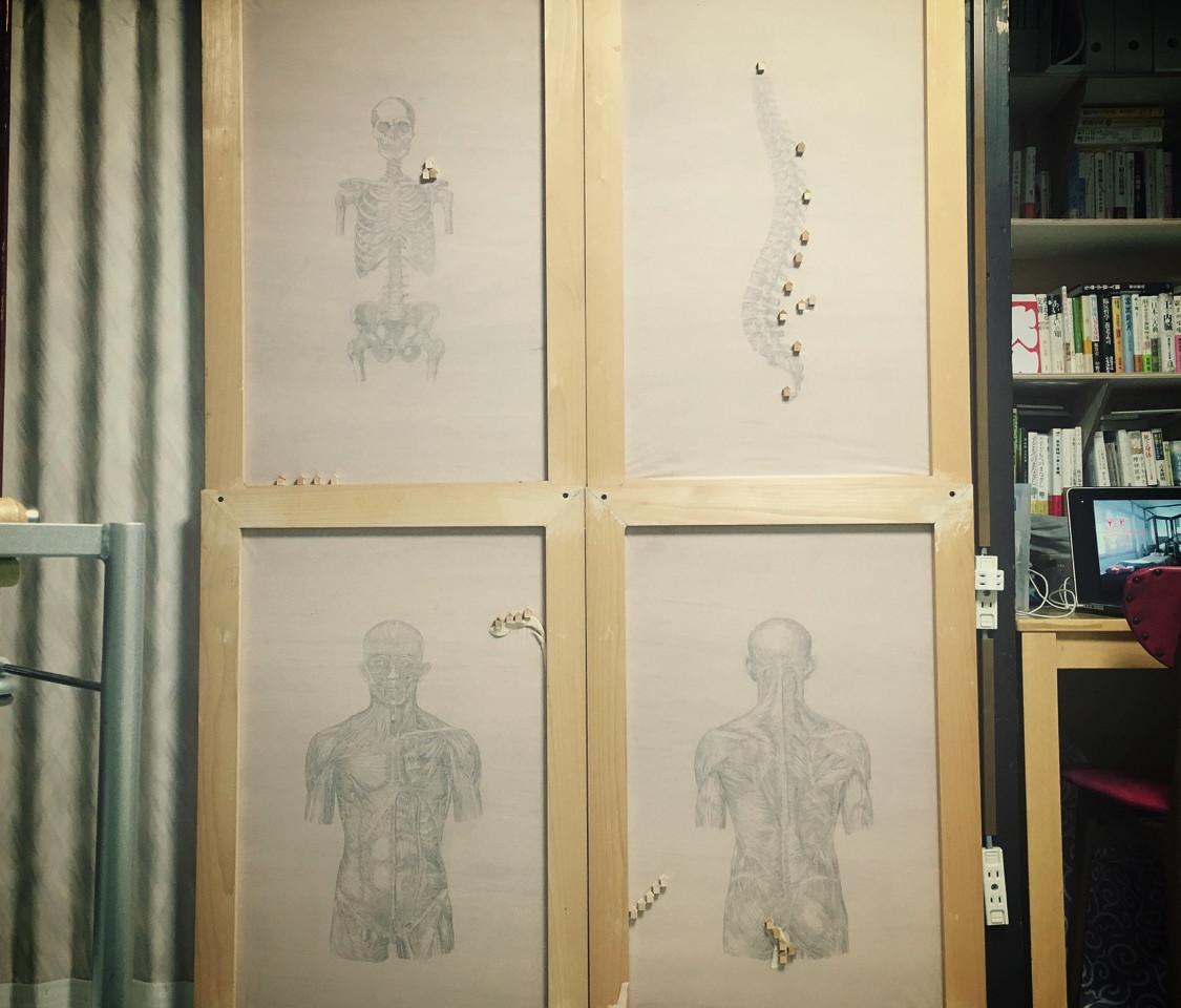 人体解剖と家の図