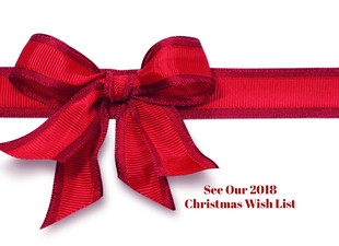 Our 2018 Christmas Wish List - Can You Help?