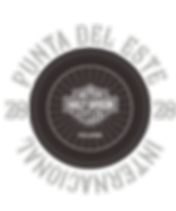 logo 2 gris@4x.png