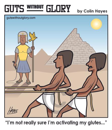 egyptian_glutes_color.jpg