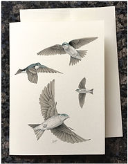Swallows flying greeting card