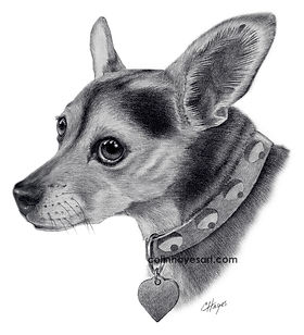 dog drawing dog portrait pencil portrait