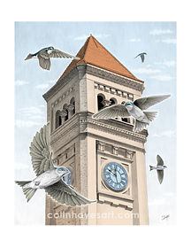 clocktower_8x10print_color_watermark.jpg
