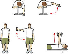 dumbbell exercises illustrations