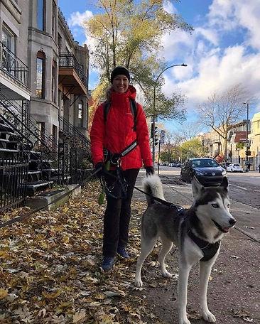 Genvieve wiggle dog walker