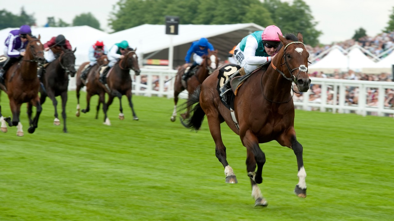 Frankel - 2012 Queen Anne