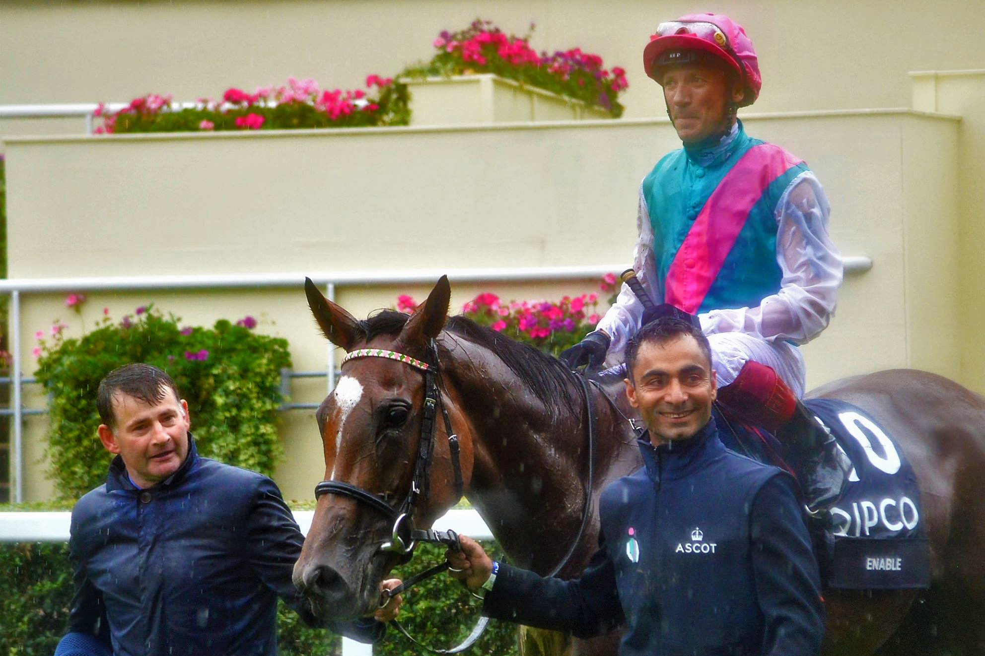 Enable - 2017 King George