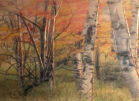 Birch Forest with golden wishes