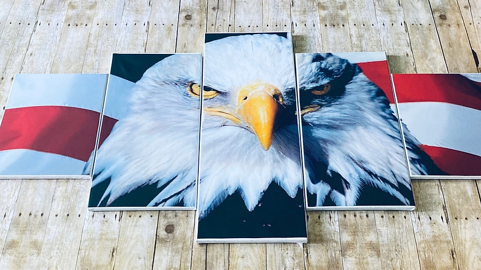 Fractal 3D American Eagle 5 Piece Wall Art on Wrapped Canvas Set