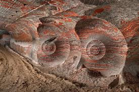 no doubt a copyrighted image from Anthropocene. Go see it.