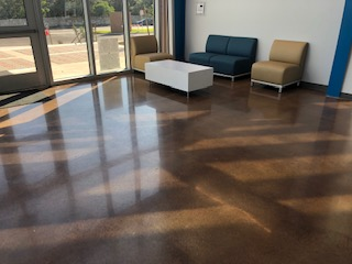 Polish Concrete  with Stain Basis School