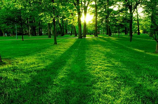Royalty-Free-Green-Park.jpg