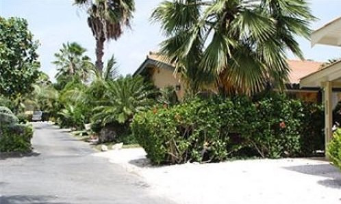 Neighborhood in Curacao where Amy was believed to be held.