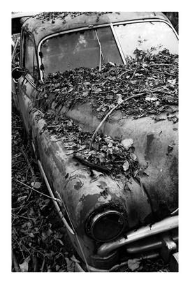Autofriedhof Gürbetal | 2008