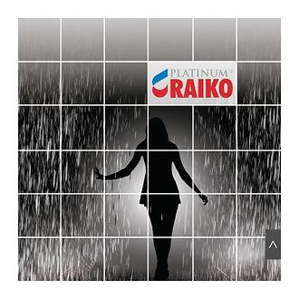 Okładka Katalog RAIKO PLATINUM - System Rynnowy