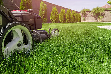 lawn-mowerCOMPRESS.jpg