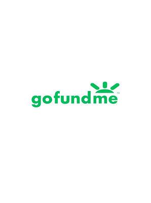 gofundme_logo.jpg