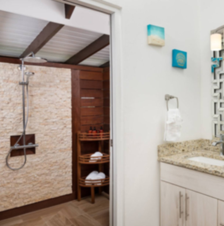 bashert-cottage-bathroom vanity and show