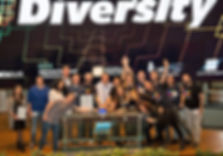 Israel Diversity Standard
