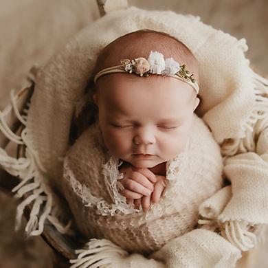 obion county newborn photo session