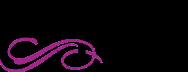 BV Logo 2018 - No background.png