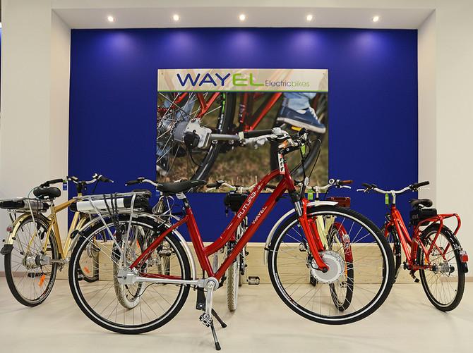 Virtual tour per Wayel Store Milano